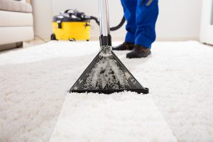 How Do You Speed Up Carpet Dry After Cleaning?